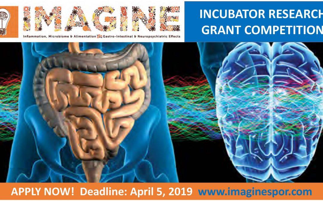 Announcing IMAGINE's Incubator Grantees!