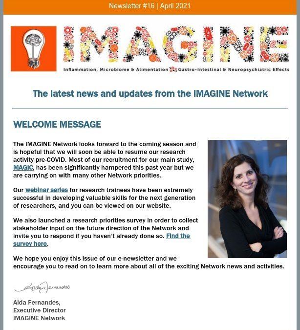 IMAGINE Network Newsletter #16