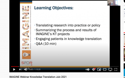 IMAGINE Webinar Series July 2021: Knowledge Translation in Research